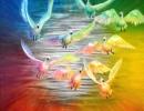 Through The Rainbow 76x76cm, 30x30ins